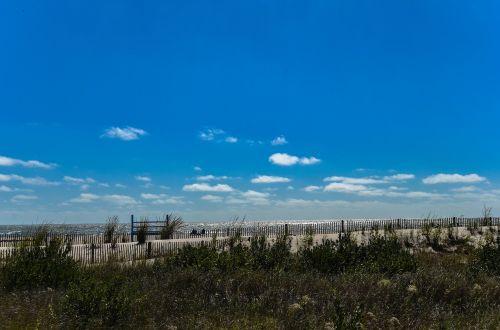 papludimys,smėlis,dangus