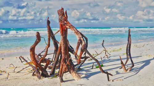 beach cuba varadero