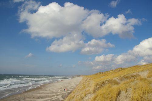beach dunes denmark