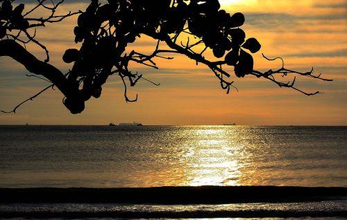 beach itajai santa catarina