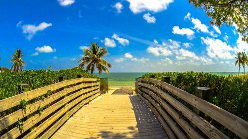 beach miami landscape