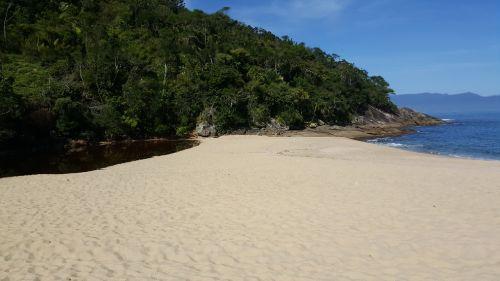 papludimys,mar,smėlis,gamta,caraguatatuba,ubatuba,šiaurinė pakrantė,takas,apleistas,dangus,medis,kraštovaizdis,mėlynas,taika,turizmas,vista,aplinka,mėlynas vanduo,šakelės