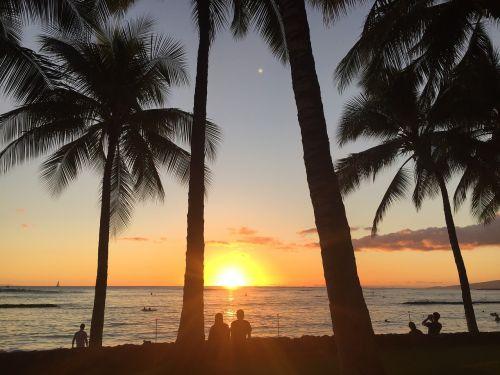 beach sunset couples