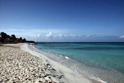 beach aruba sand beach