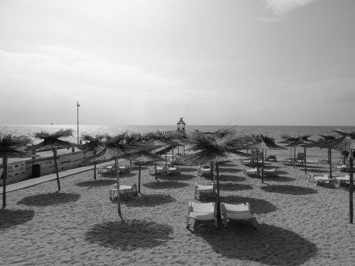 beach sunbathing sea