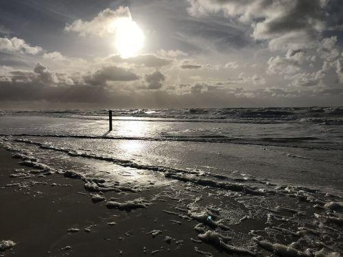 papludimys,smėlis,Šiaurės jūra,jūra