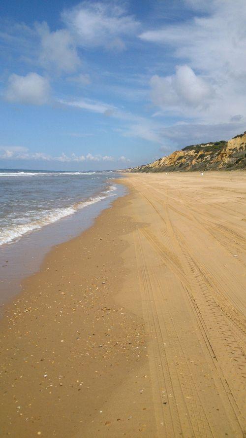 beach doñana sand