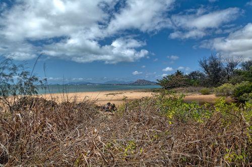 beach beach scape pallarenda beach