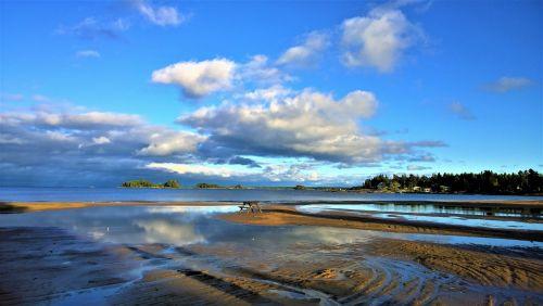 beach sea lake