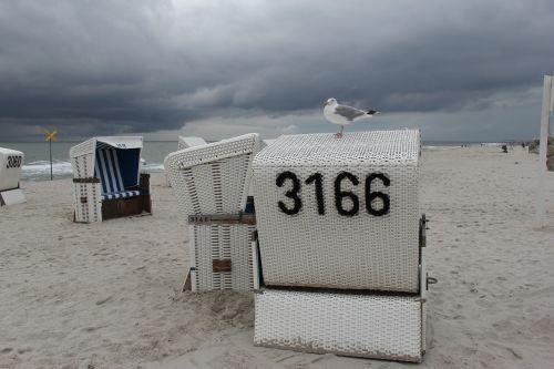 papludimys, smėlis, jūra, kranto, kelionė, paplūdimys, sylt, vasara, šventė, Šiaurės jūra, smėlio paplūdimys vanduo, be honoraro mokesčio