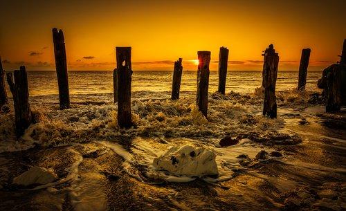 beach  coast  dawn