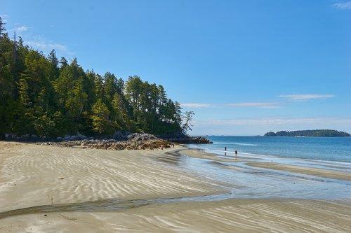 beach  sea  tofino