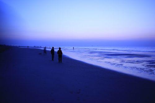 beach dawn visitors