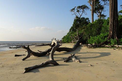 beach  sea  wandoor