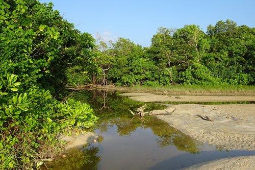 beach  creek  sea