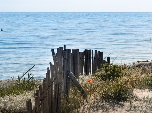 beach  bank  sand
