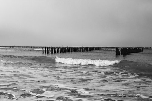 beach  sea  ocean