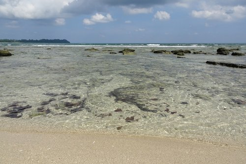 beach  rocky  coral reef