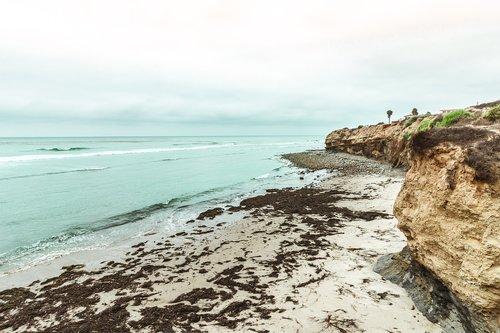 beach  ocean  nature