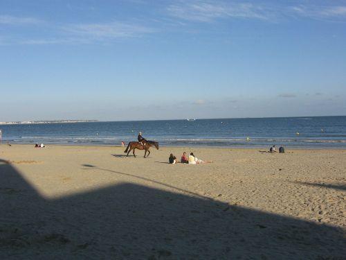 beach atlantic horse