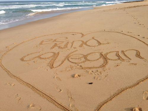 papludimys,smėlis,rašymas,Veganas