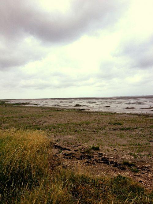 beach sea watts