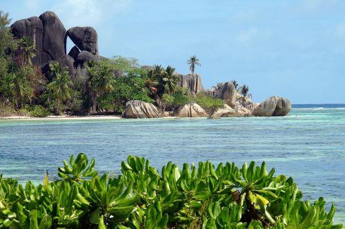 beach rocks tropics