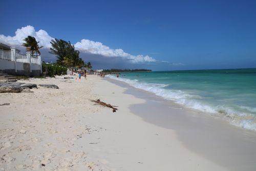 beach bahamas tropical