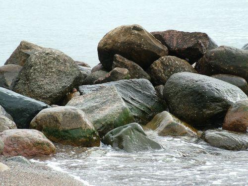 papludimys,Baltijos jūra,akmuo,smėlis,jūra,vanduo,kranto,gamta,struktūros