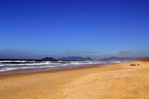 beach brazil nature
