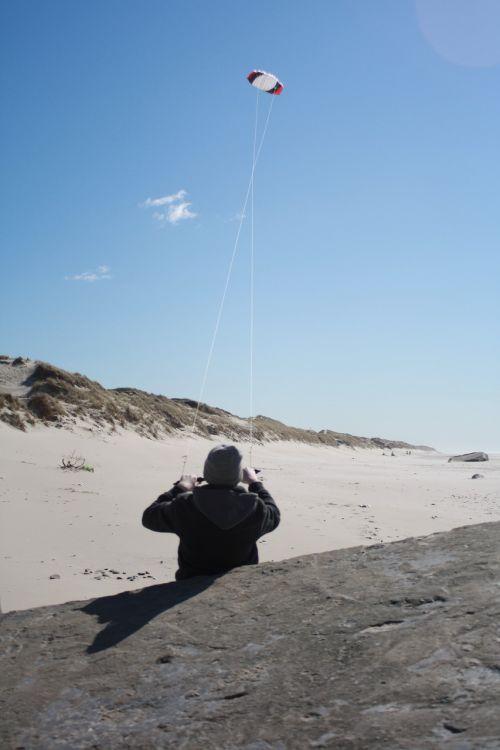 beach wind dragons