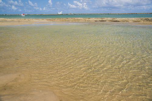 beach natural swimming pool bar