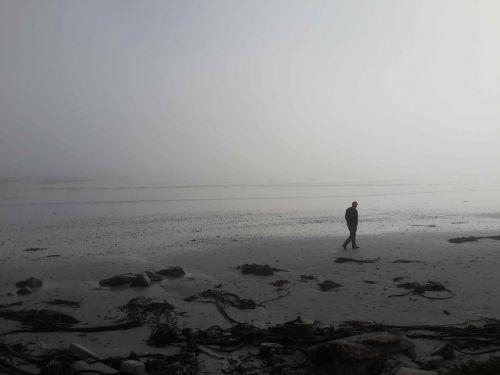 papludimys,vaikščioti,migla,kontempliatyvas,Patinas,smėlis,jūra,kranto,asmuo,vaikščioti,vanduo,vandenynas,lauke,žmonės