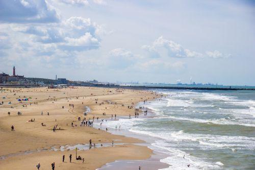 beach sea coast