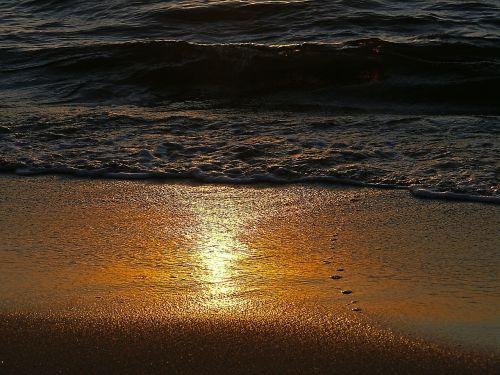 beach sea shoreline