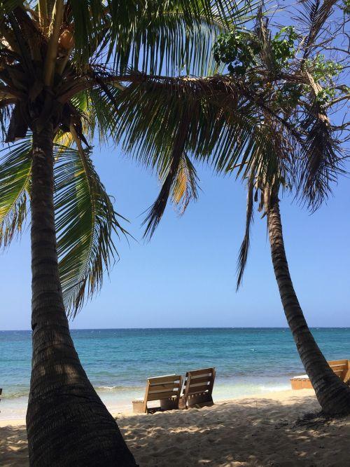 beach jamaica sand