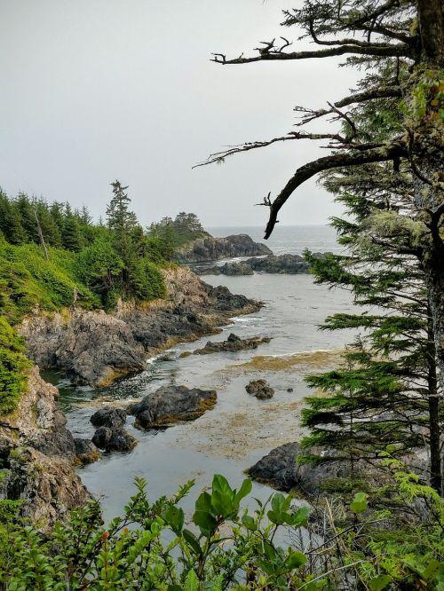 vancouver island beach nature