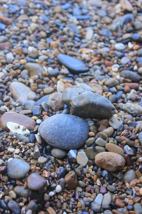 beach cobblestone stone