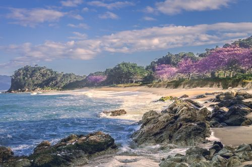 beach thick itapema santa catarina