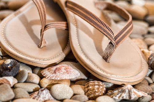 beach thongs flip flops footwear