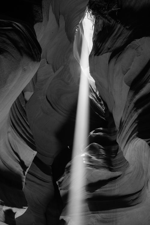 beam antelope valley black and white