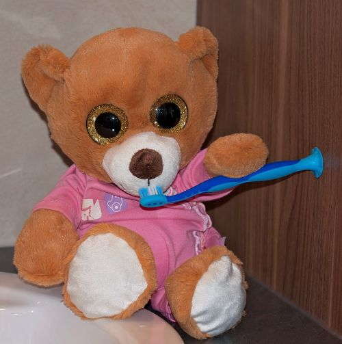 bear teddy bear stuffed animal