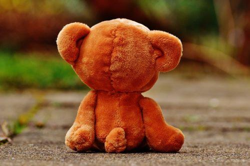 bear teddy lonely