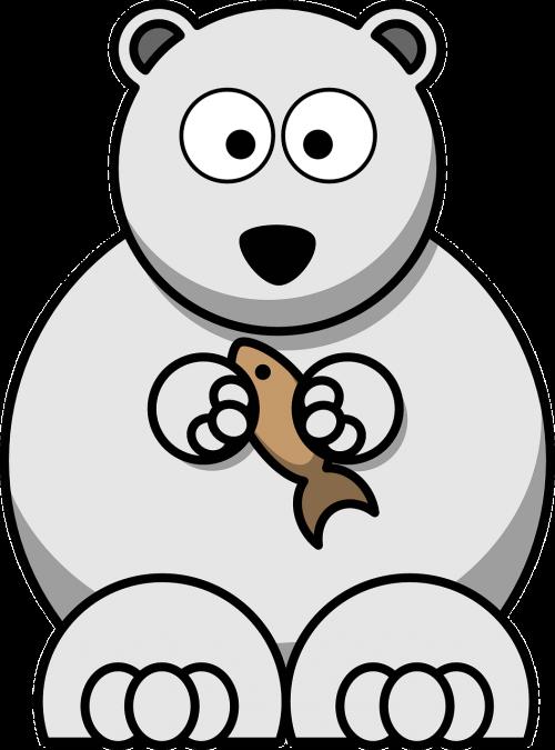 bear polar bear arctic