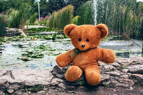 bear teddy toy