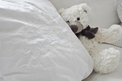 bear teddy bear teddy