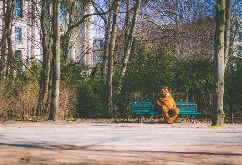 bear mascot depressed