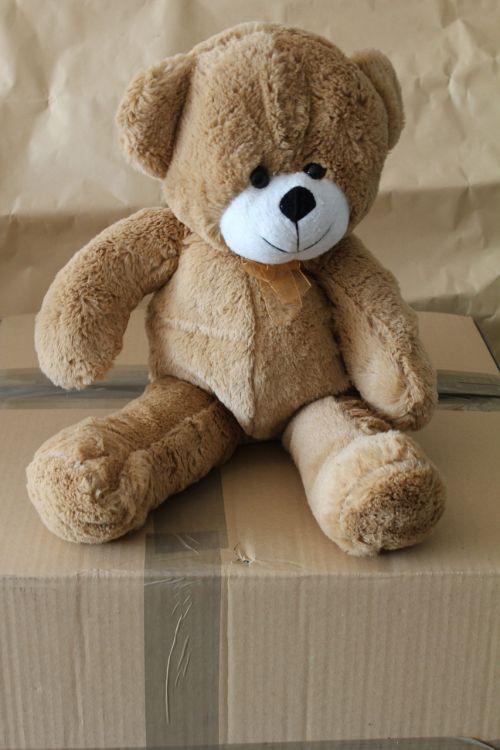 bear teddy soft toy