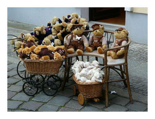 bear teddy animal