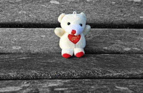 bear cuddly toy stuffed animal
